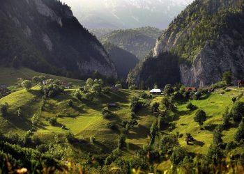 Bukovina Rumuńska